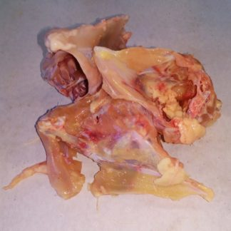 Chicken Carcass