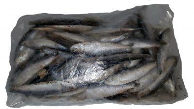 Sprats Bag