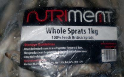 Whole Sprats