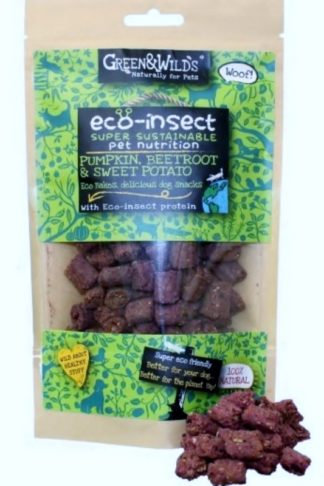 Green and Wild Eco-insect Bakes